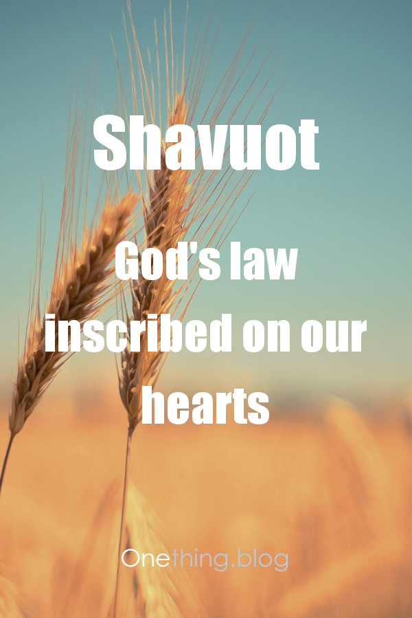 Bible verse in front of a field of wheat
