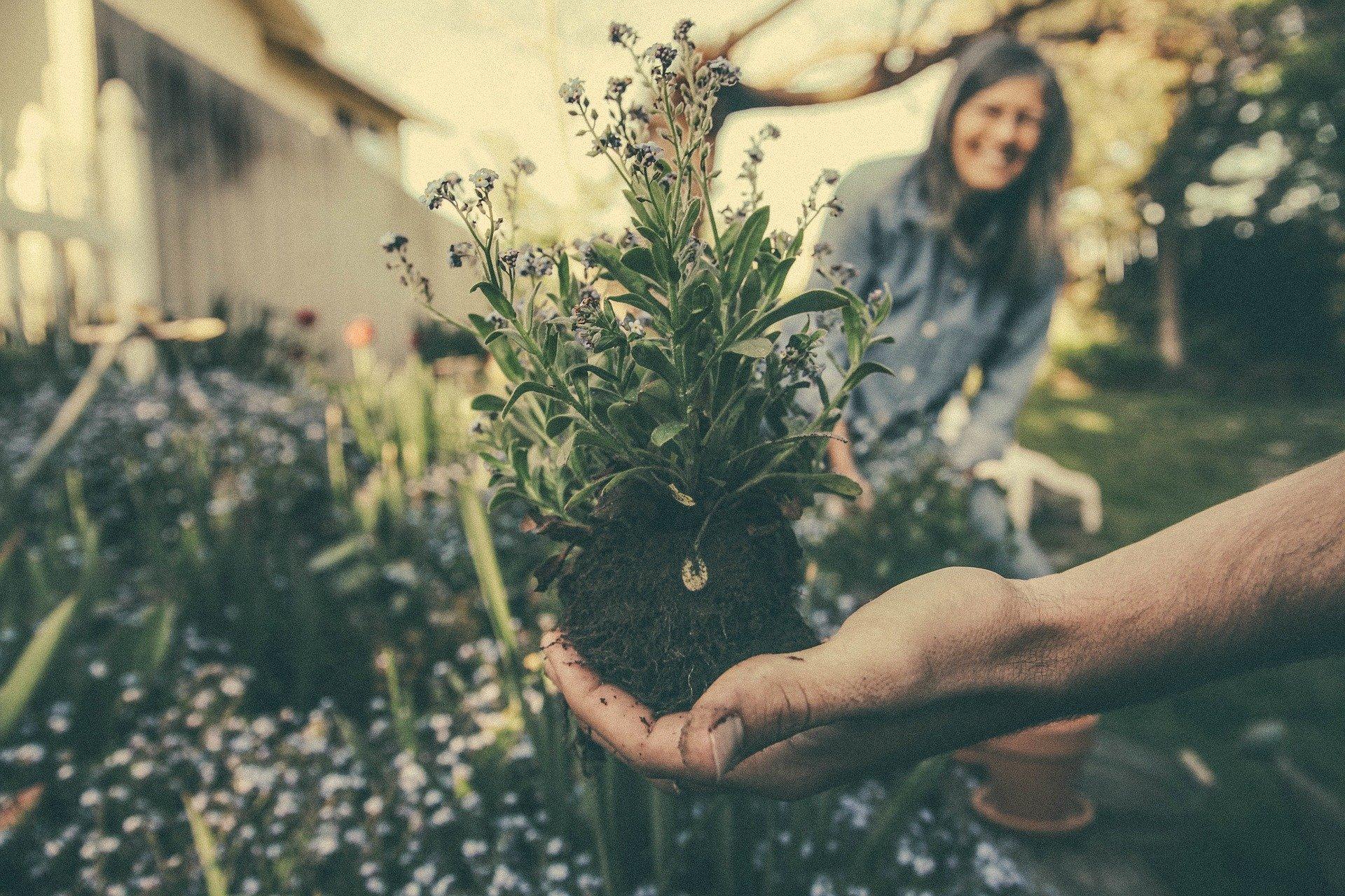 Weibliche Sexualität – Jeder Garten ist gleich gut