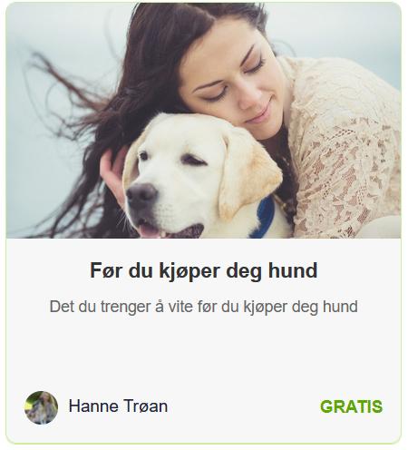 For-du-kjoper-hund