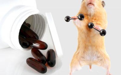 Todo lo que necesitas saber sobre CLA para perder grasa