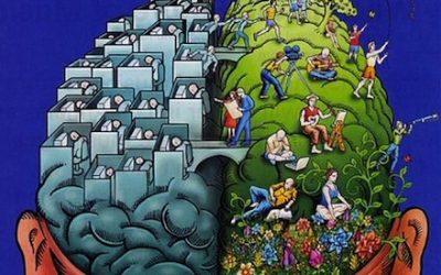 VII. Pondrás en forma tu cerebro