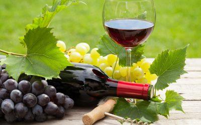 La verdad sobre el vino tinto y el resveratrol