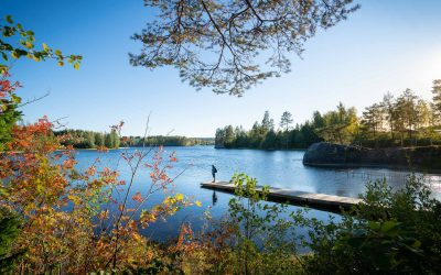 16 Høstaktiviteter i Sverige