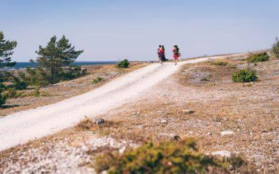 Gotlands varierte landskap