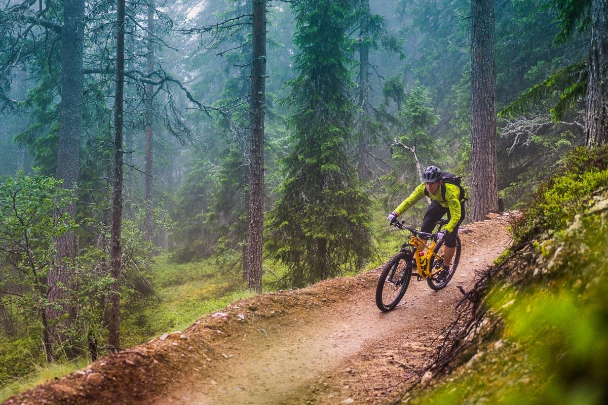 En syklist kjører terrengsykkel i full fart gjennom skogen