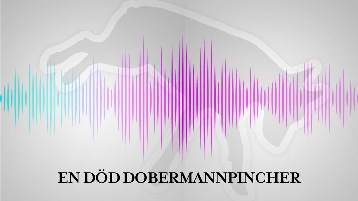 En död dobermannpincher sommarserie bild