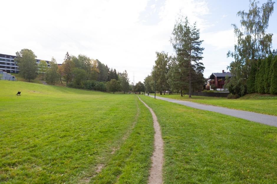 Foto av Hovseterdalen