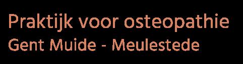 Silke De Raedt - Osteopaat