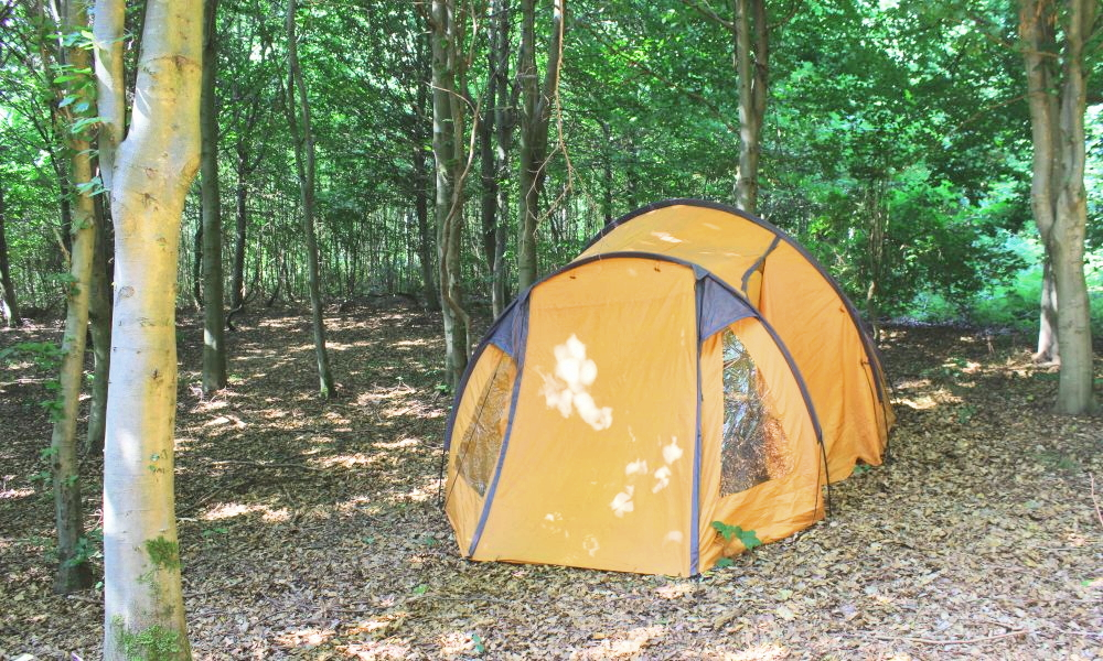 Billig camping i Østjylland