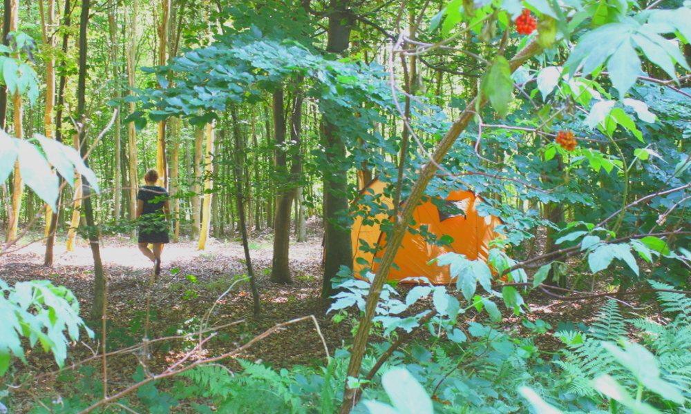 billig camping fri teltning Nordsjaelland