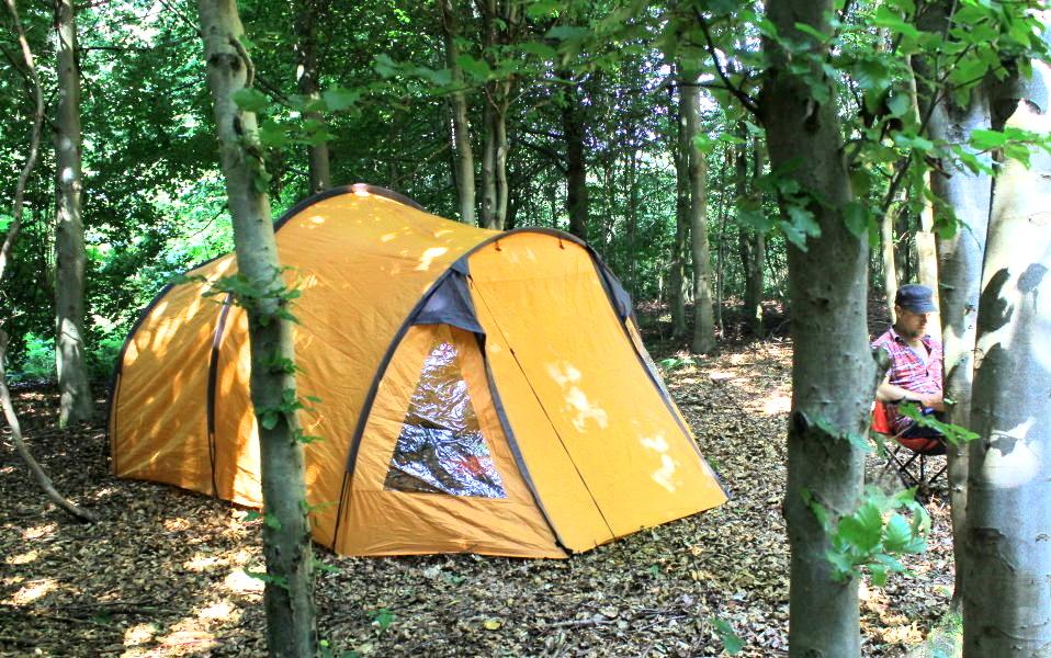 billig camping fri teltning nordjylland
