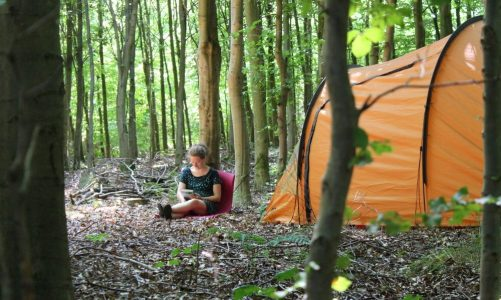 billig camping fri teltning vestjylland
