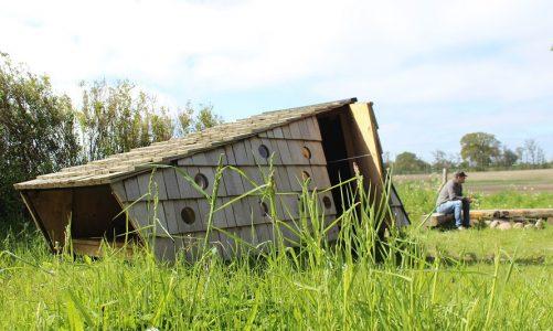 byggetilladelse shelter i haven