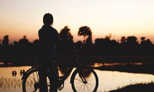 Cykeltur i Møns natur for 2 med overnatning og morgenmad