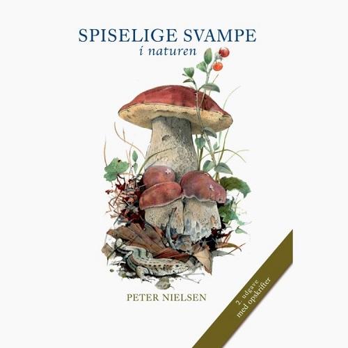 Spisesvampe i Danmark spiselige svampe i danske skove Spiselige svampe i naturen