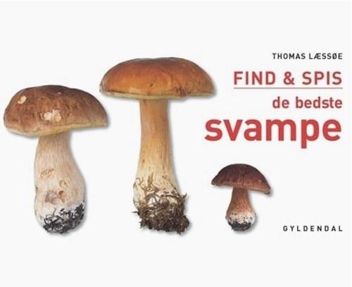 Spisesvampe i Danmark spiselige svampe i danske skove find og spis de bedste svampe