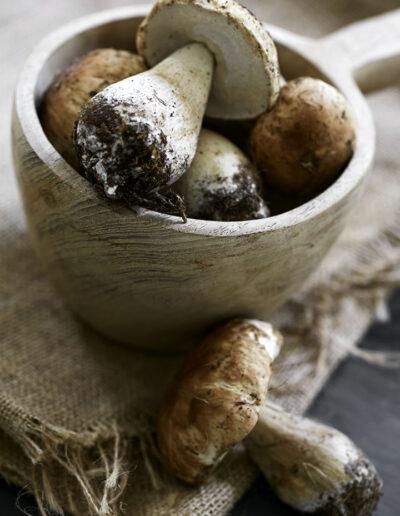 05-svampe-kogebog-madfoto-foodstyling-kahlerdesign-annaoverholdt