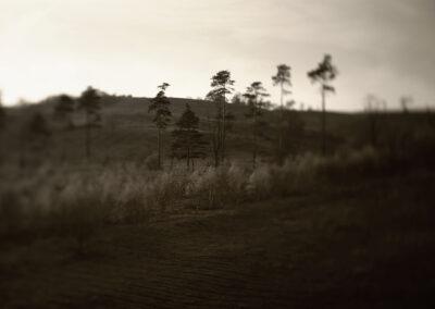 15-fotokunst-mirrortonature-naturbillede-molsbjerge-landskab-annaoverholdt