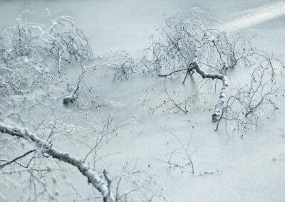 22-fotokunst-mirrortonature-naturbillede-is-annaoverholdt