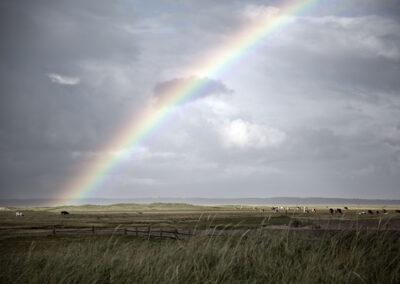 32-regnbue-natur-visitwestdenmark-skallingen-reportagebilleder-annaoverholdt
