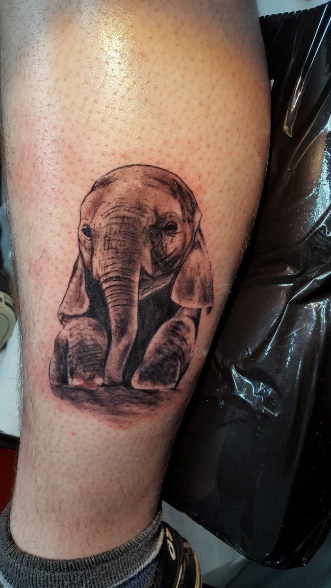 Babyelefanten-Tattoo