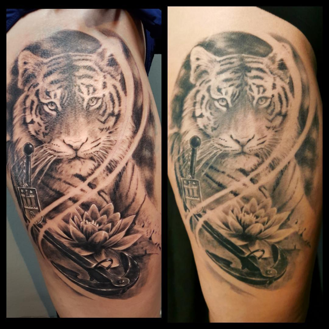 Tiger Tattoo mit Anker - Hamburger Wappen und Lotus - Verheilt nach einem Jahr