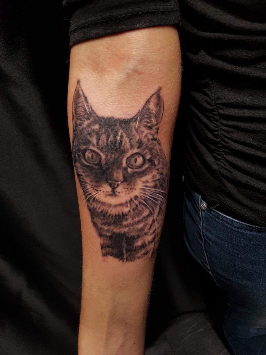 Porträt Tattoo einer Katze