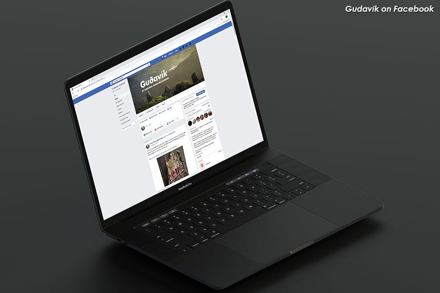 portfolio-items-gudavik-some1