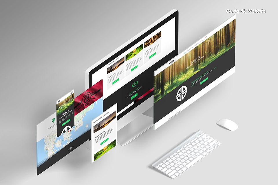 portfolio-items-gudavik-website-responsive