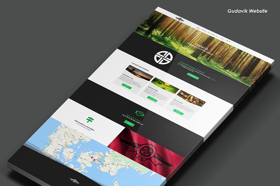 portfolio-items-gudavik-website