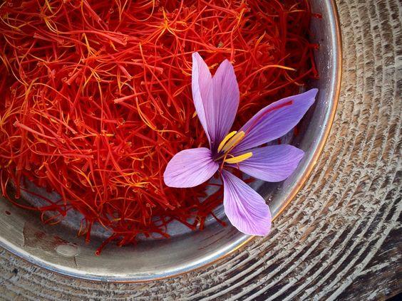 hälsofördelar med saffran