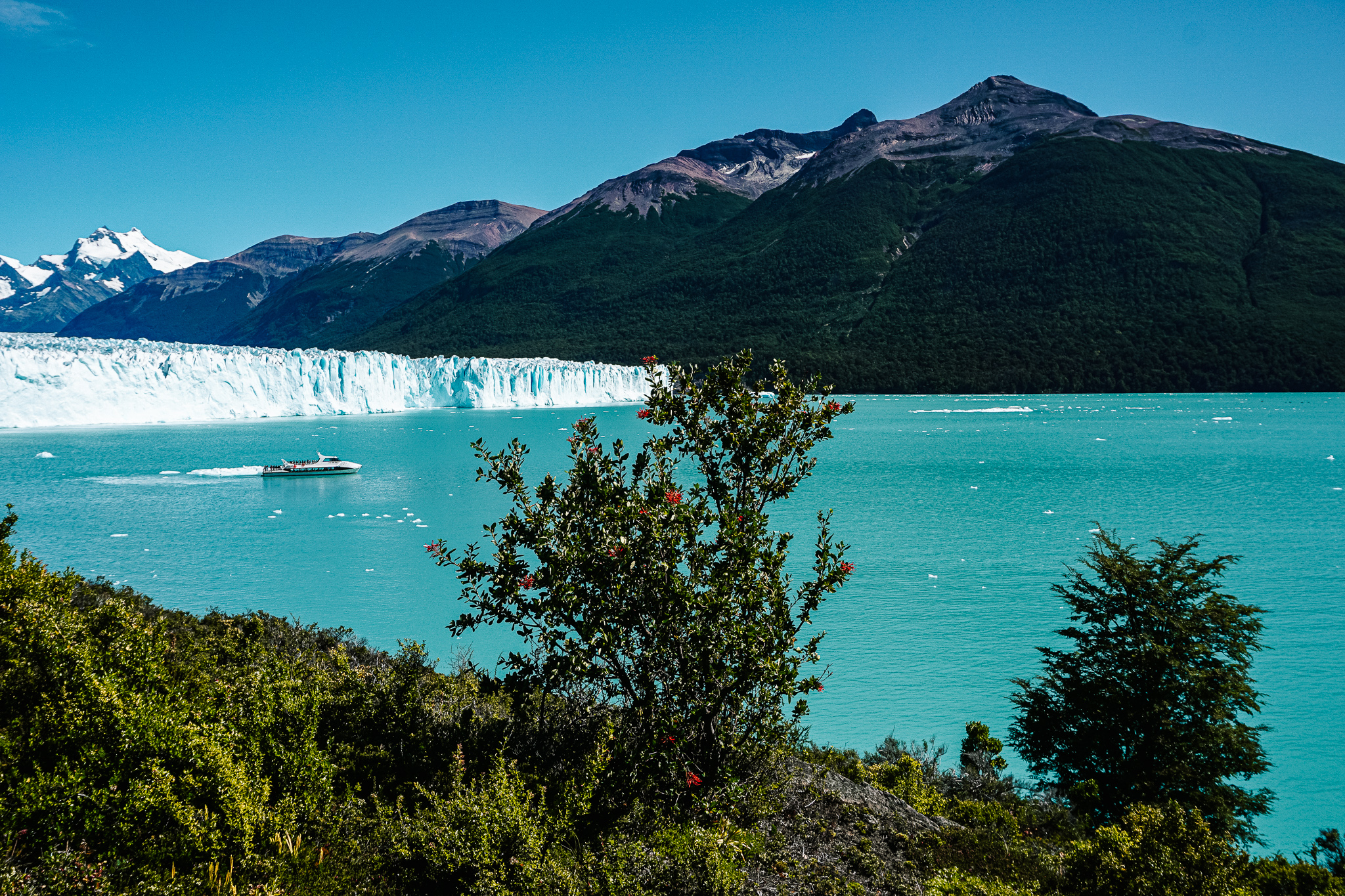 Argentinie natuur Perito moreno gletsjer