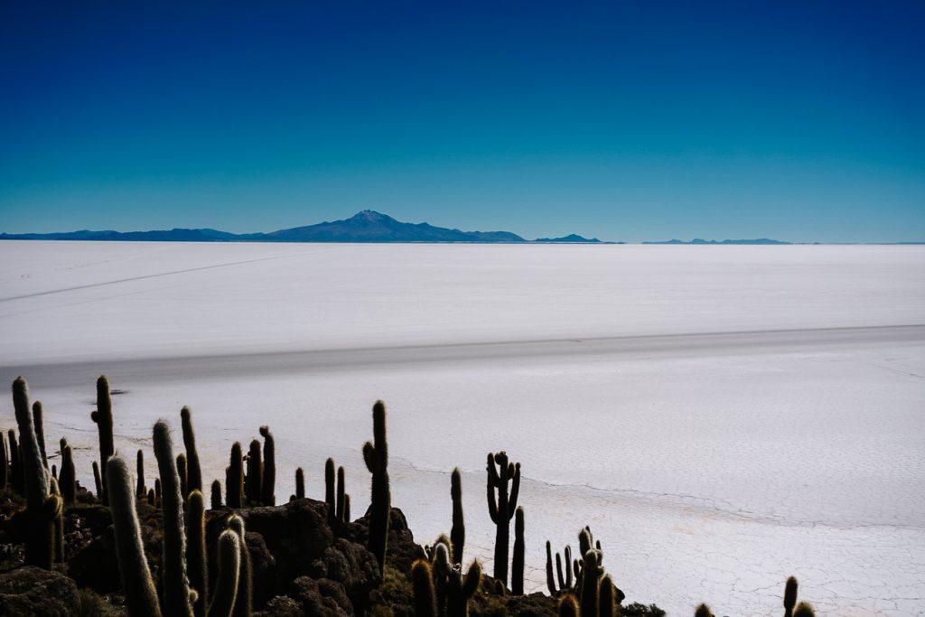 view Isla Incahuasi to visit during a Uyuni salt flats day tour | Salar de Uyuni Bolivia