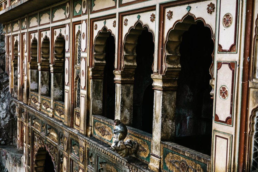 Highlights of Jaipur monkey temple