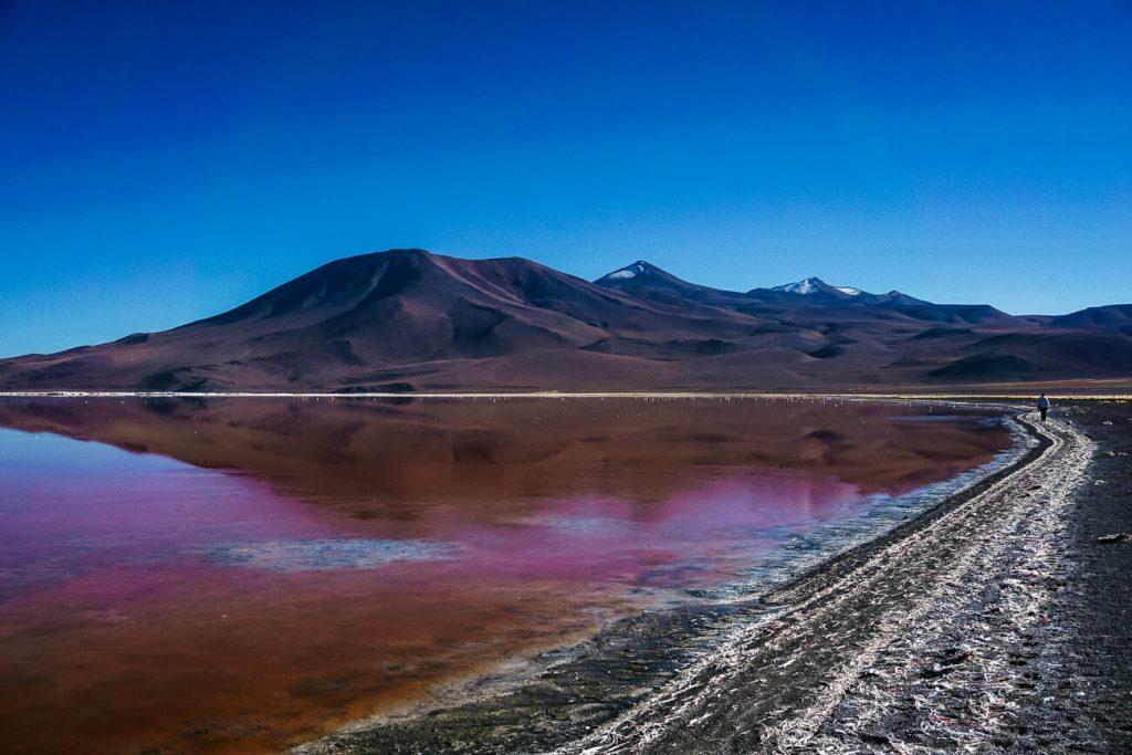 Bolivia Laguna colorado