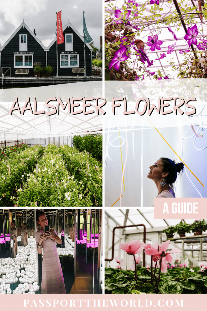 Discover the city of flowers in the Netherlands: Aalsmeer - a full guide