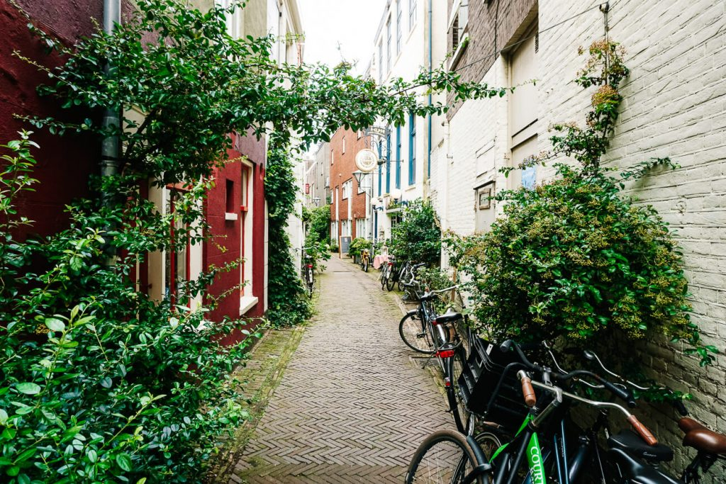 what to do in Haarlem   haarlem streets