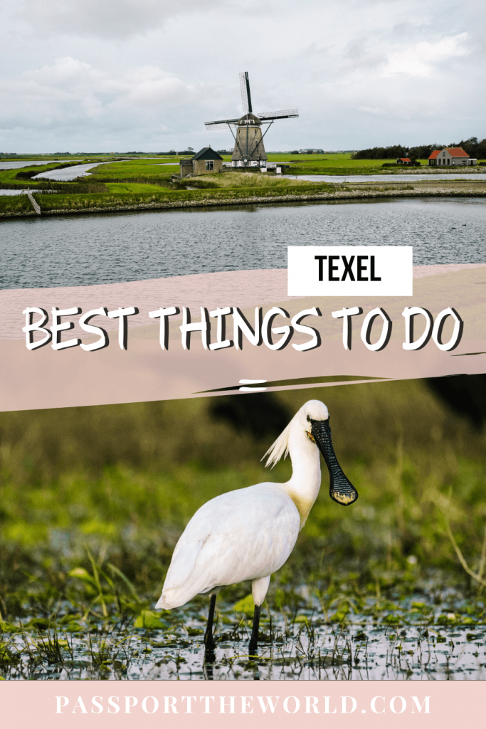 Texel Netherlands - what to do