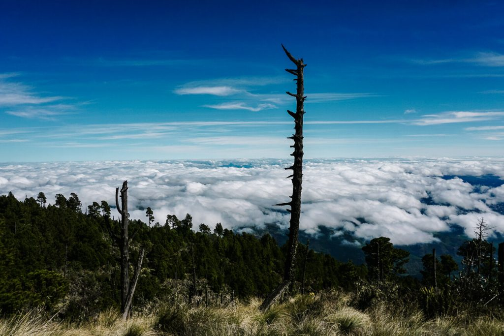 looking over the clouds during the Acatenango volcano hike in Guatemala