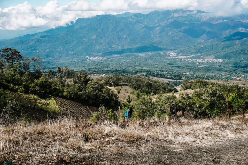 farmers at work in Guatemala