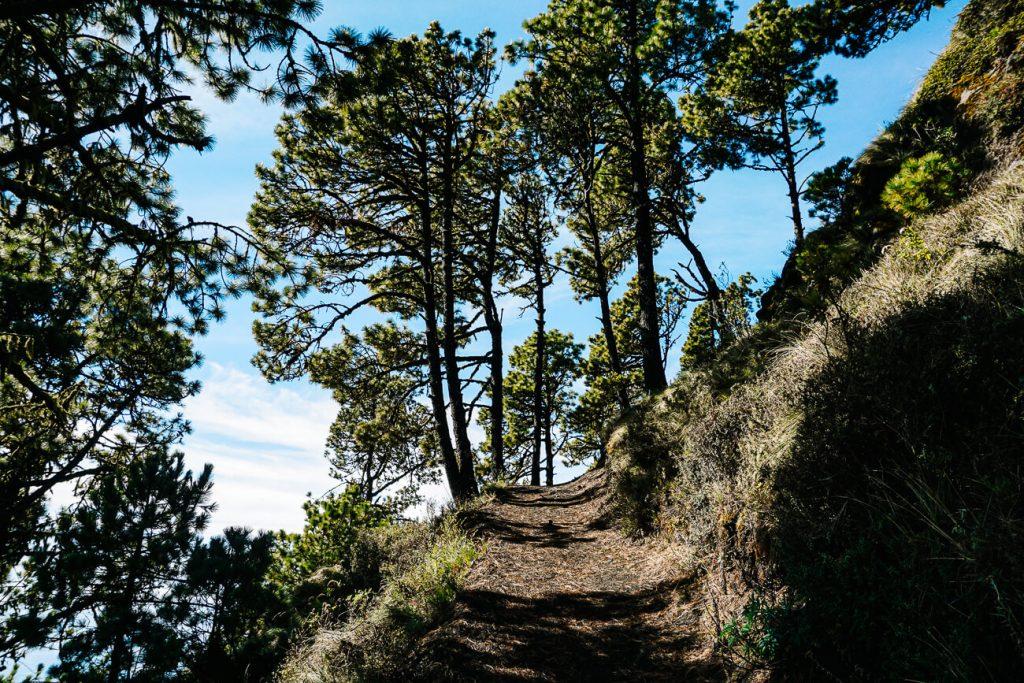 trails when hiking the Acatenango in Guatemala