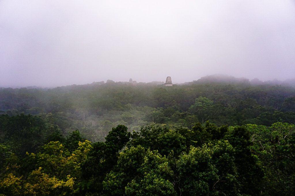 uitzicht tempel 4 tikal national park Guatemala