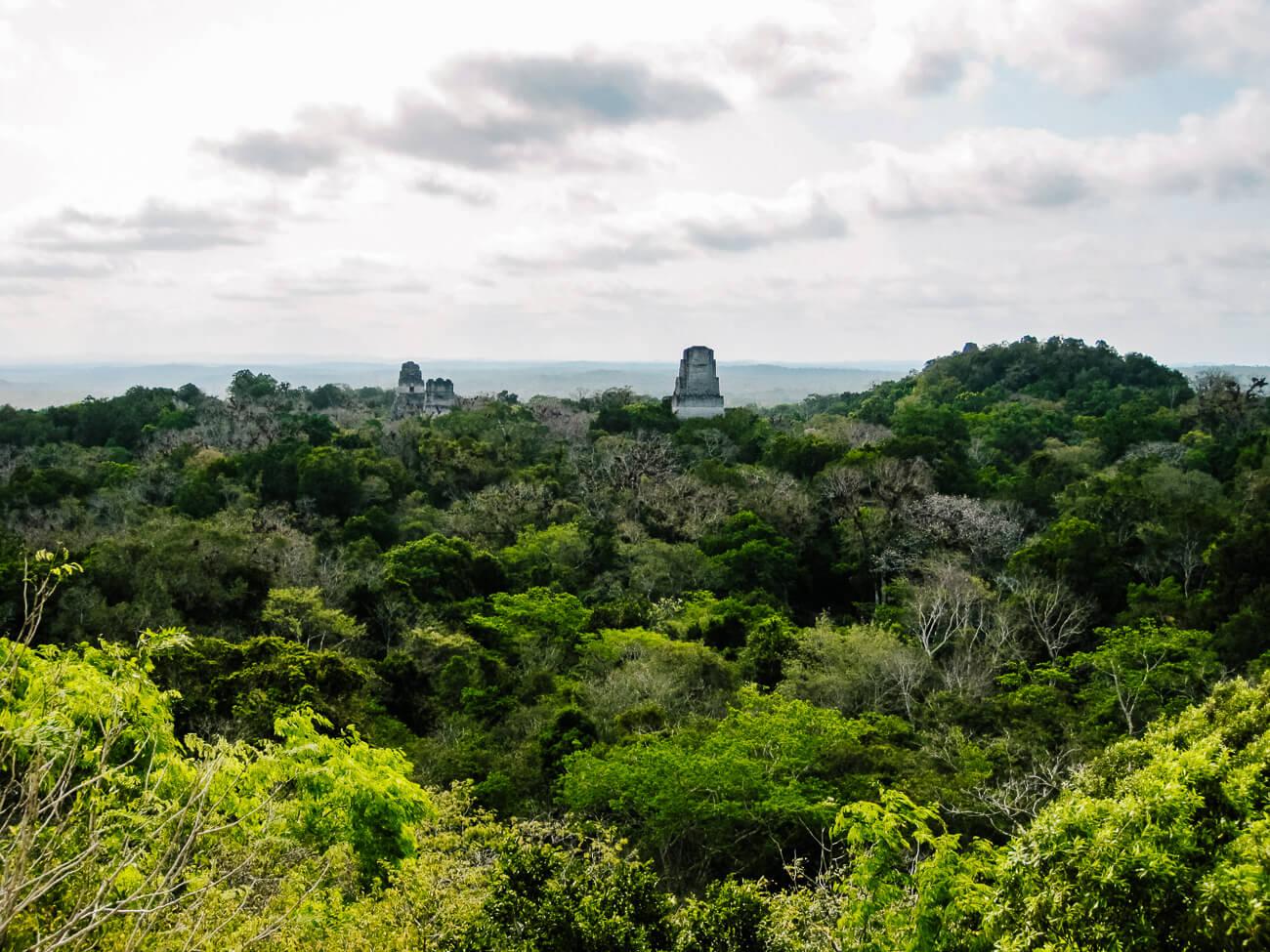 Tikal national park guatemala