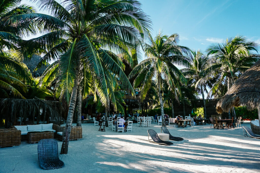 strand met palmbomen op isla de holbox