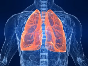 Chest diagram on dark blue background with bright orange lungs.