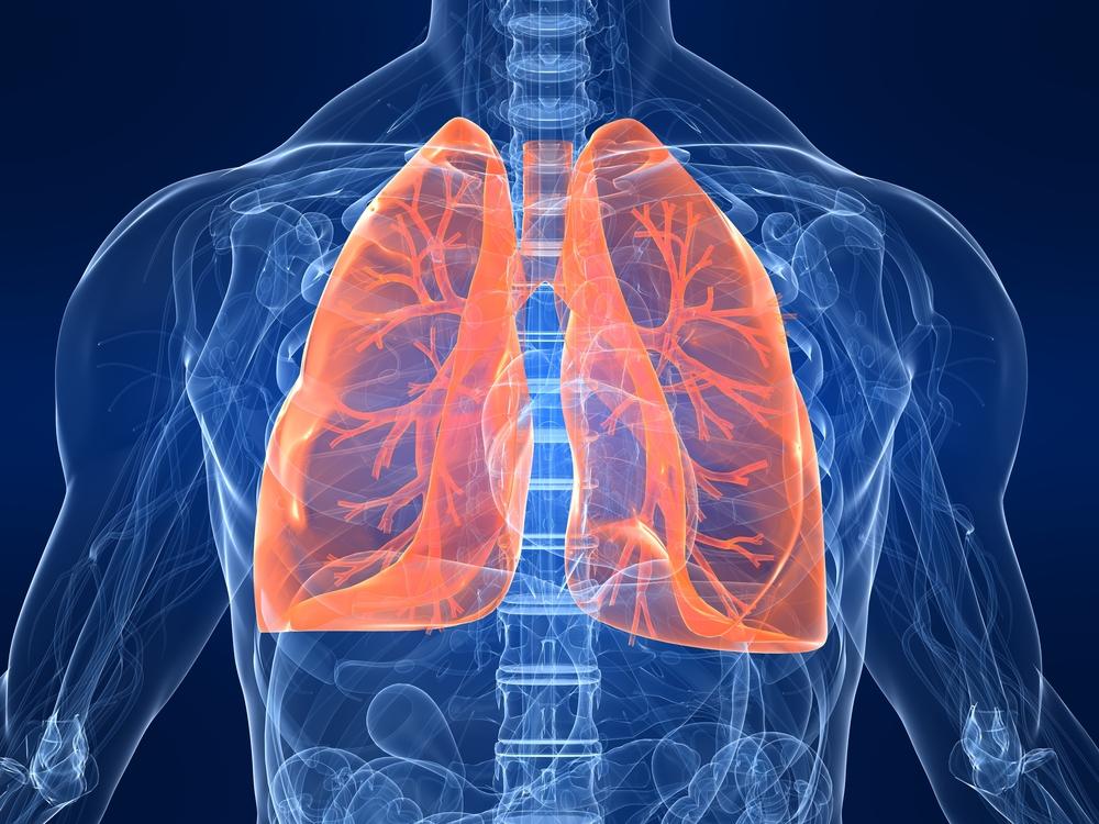 Chest diagram on dark blue background with bright orange lungs.