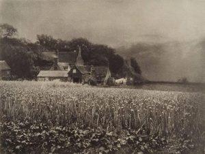 The Onion Field, George davison (England 1854-1890) 1890, fotogravyr från 1907