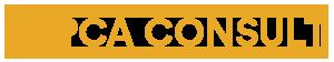 PCA Consult Logotyp