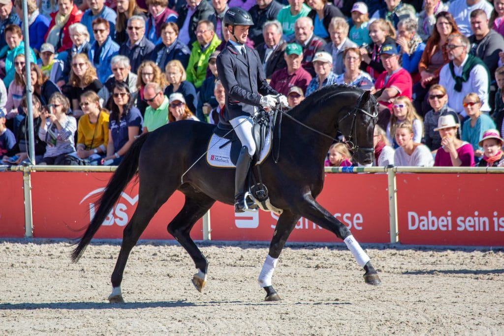 Doubtless v. Don Nobless-His Highness unter Lukas Maier (Foto: Seitz)