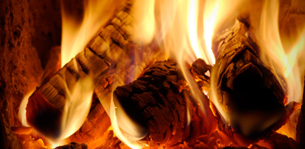 wood burning, which wood is the best to burn